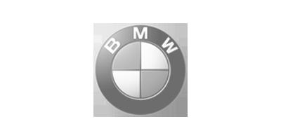 BMW Logo Mountain News
